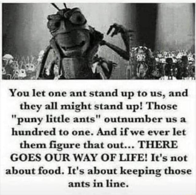 Af You let one ant stand up to us, and they all might stand up Those puny little ants outnumber us a hundred to one. And if we ever let them figure that out THERE GOES OUR WAY OF LIFE It's not about food. It's about keeping those ants in line memes