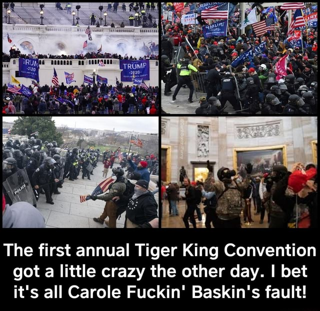 He th The first annual Tiger King Convention got a little crazy the other day. I bet it's all Carole Fuckin Baskin's fault The first annual Tiger King Convention got a little crazy the other day. I bet it's all Carole Fuckin Baskin's fault memes