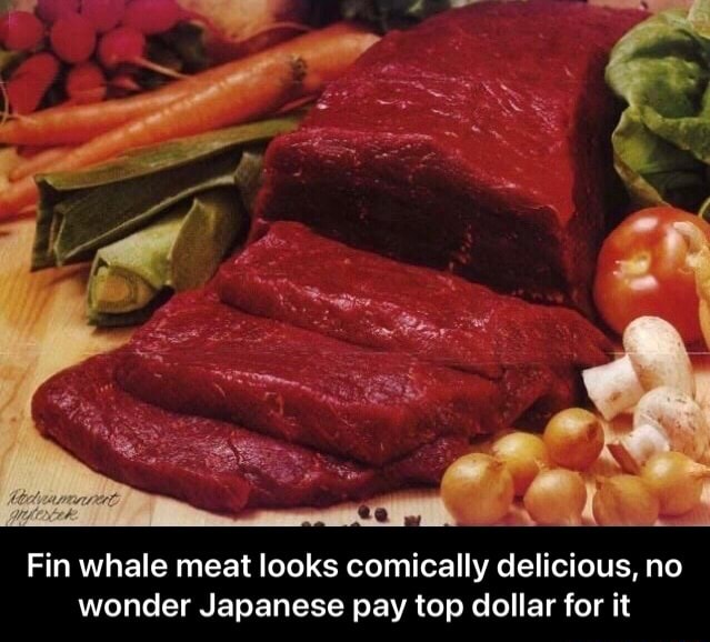 Fin whale meat looks comically delicious, no wonder Japanese pay top dollar for it Fin whale meat looks comically delicious, no wonder Japanese pay top dollar for it memes