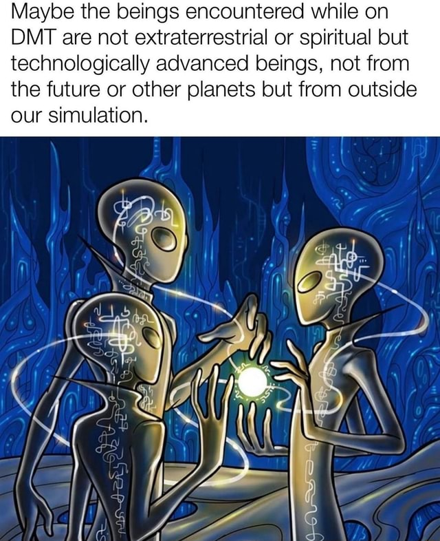 Maybe the beings encountered while on DMT are not extraterrestrial or spiritual but technologically advanced beings, not from the future or other planets but from outside our simulation meme