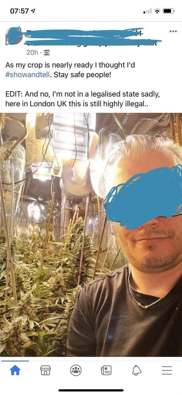 As my crop is nearly ready I thought I'd showandtell. Stay safe people EDIT And no, I'm not in a legalised state sadly, here in London UK this is still highly illegal meme