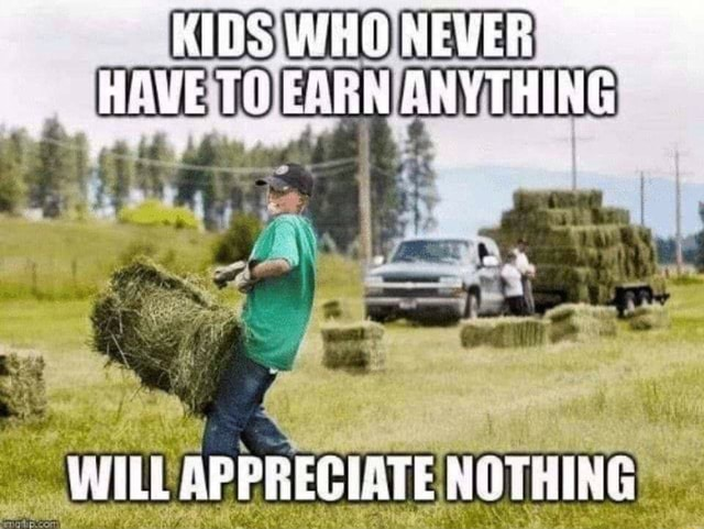 KIDS WHONEVER HAVE TO EARN ANYTHING WILL APPREGIATE NOTHING memes