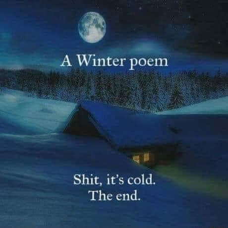 A Winter poem gi Shit, it's cold. The end memes