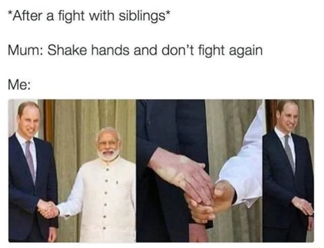 After a fight with siblings* Mum Shake hands and do not fight again memes
