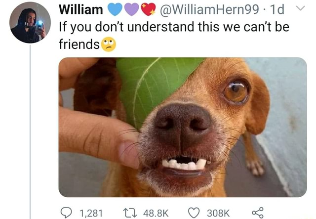 William QwilliamHern99  If you do not understand this we can not be friends 1281 488K 308K memes