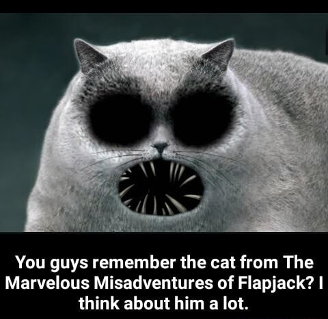 You guys remember the cat from The Marvelous Misadventures of Flapjack I think about him a lot.  You guys remember the cat from The Marvelous Misadventures of Flapjack I think about him a lot memes