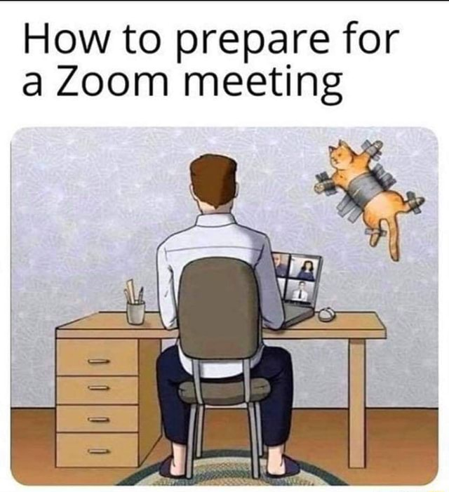 Catowners Life How to prepare for Zoom meeting memes