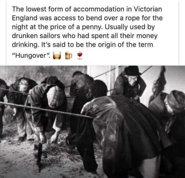 The lowest form of accommodation in Victorian England was access to bend over a rope for the night at the price of a penny. Usually used by drunken sailors who had spent all their money drinking. It's said to be the origin of the term Hungover memes