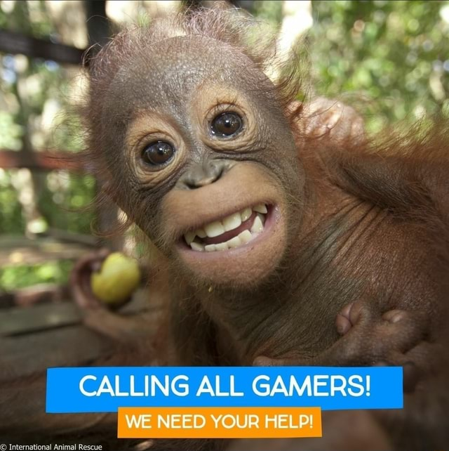 CALLING ALL GAMERS WE NEED YOUR HELP memes