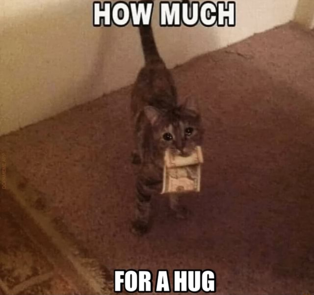 HOW MUCH FOR A HUG memes