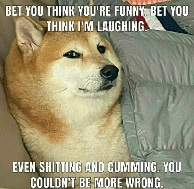 BET YOU THINK YOU'RE FUNNY. BET YOU THINK I'M LAUGHING EVEN SHITTING AND CUMMING. YOU COULDN'T BE MORE WRONG meme