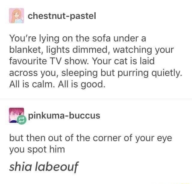 Chestnut pastel You're lying on the sofa under a blanket, lights dimmed, watching your favourite TV show. Your cat is laid across you, sleeping but purring quietly. Allis calm. All is good. but then out of the corner of your eye you spot him shia labeouf memes