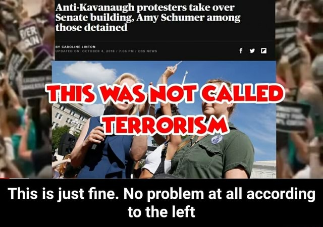 Anti Kavanaugh protesters take over Senate building, Amy Schumer among THIS CALLED those detained This is just fine. No problem at all according to the left This is just fine. No problem at all according to the left memes