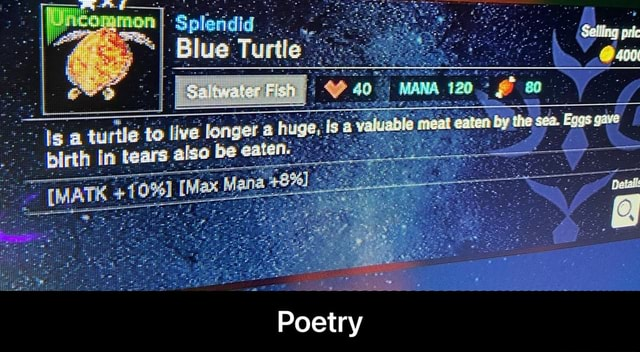 Blue Turtle pirth tears also be eaten. IMATK 10% Max Mana 48% Poetry Poetry memes