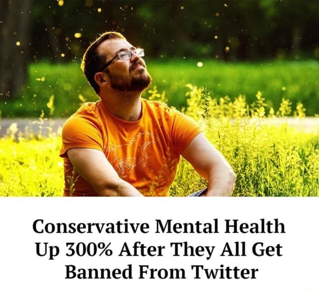 Oe Conservative Mental Health Up 300% After They All Get Banned From Twitter memes