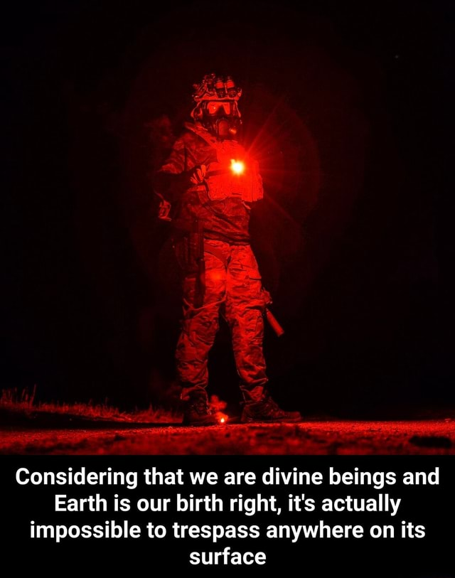 Considering that we are divine beings and Earth is our birth right, it's actually impossible to trespass anywhere on its surface  Considering that we are divine beings and Earth is our birth right, it's actually impossible to trespass anywhere on its surface memes