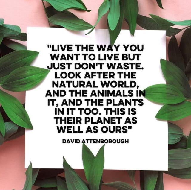 LIVE THE WAY YOU WANT TO LIVE BUT JUST DON'T WASTE. LOOK AFTER THE NATURAL WORLD, AND THE ANIMALS I IT, AND THE PLANTS IN IT TOO. THIS IS THEIR PLANET AS WELL AS OURS DAVID ATTENBOROUGH memes