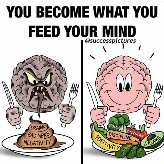 YOU BECOME WHAT YOU FEED YOUR MIND successp memes