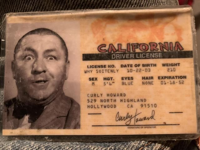 ORIVER LICENSE LICENSE NO. DATE OF BIRTH WEIGHT wHy SOITENLY SEX HGT. EVES HAIR EXPIRATION Ste BLUE NONE SE CURLY HOWARD 529 NORTH HIGHLAND HOLLYWOOD CA 91510 memes