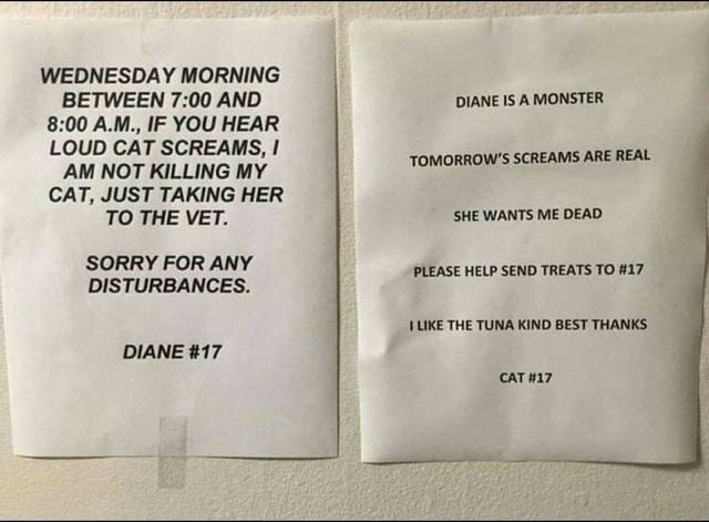 WEDNESDAY MORNING BETWEEN AND A.M., IF YOU HEAR LOUD CAT SCREAMS, AM NOT KILLING MY CAT, JUST TAKING HER TO THE VET. SORRY FOR ANY DISTURBANCES. DIANE 17 DIANE IS A MONSTER TOMORROW'S SCREAMS ARE REAL SHE WANTS ME DEAD PLEASE HELP SEND TREATS TO 17 LIKE THE TUNA KIND BEST THANKS CAT 17 memes
