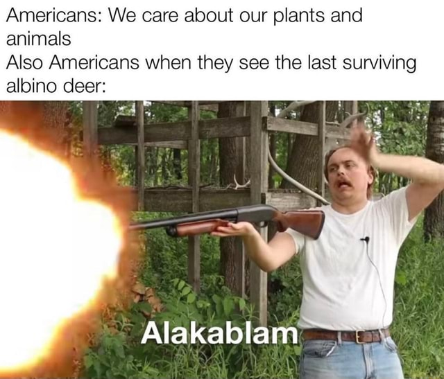 Americans We care about our plants and animals Also Americans when they see the last surviving albino deer Alakablam meme