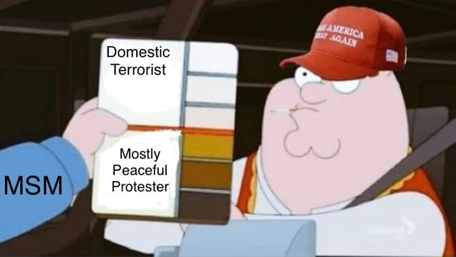 Domestic Terrorist Mostly Peaceful Protester memes