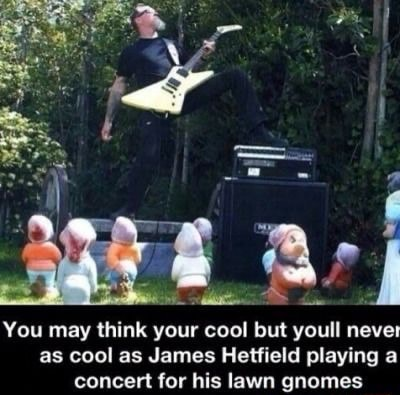 You may think your cool but youll never as cool as James Hetfield playing a concert for his lawn gnomes memes