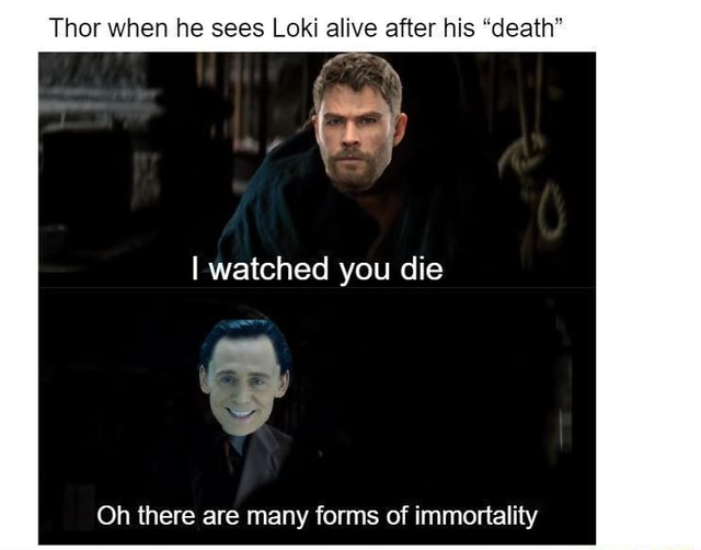 Thor when he sees Loki alive after his death I watched you die Oh there are many forms of immortality memes
