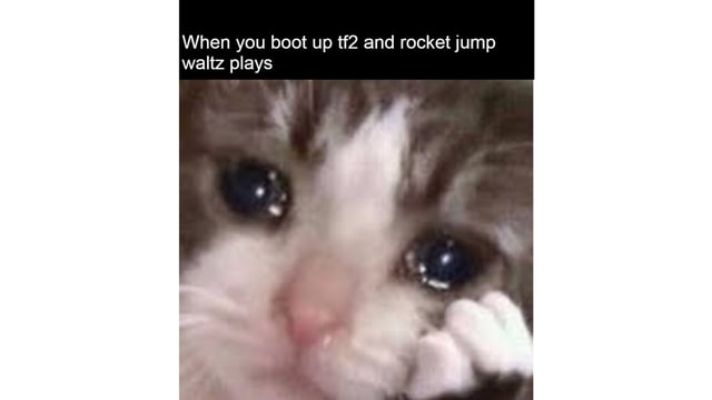 When you boot up and rocket jump waltz plays ww 7 meme