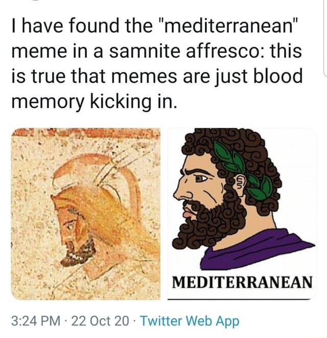 I have found the mediterranean meme in a samnite affresco this is true that memes are just blood memory kicking in. by PM 22 Oct 20 Twitter Webb App MEDITERRANEAN
