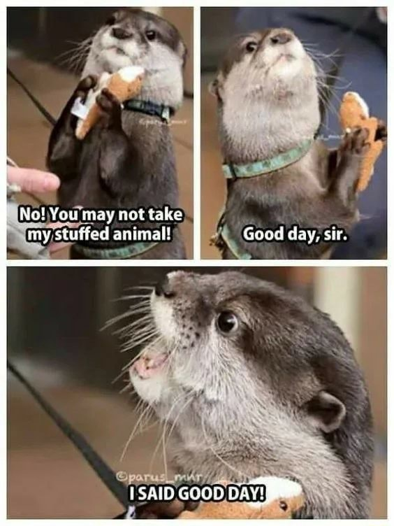 Not You may netiake my stuffed animal Goud day, sir. isaio eeoon DAT memes