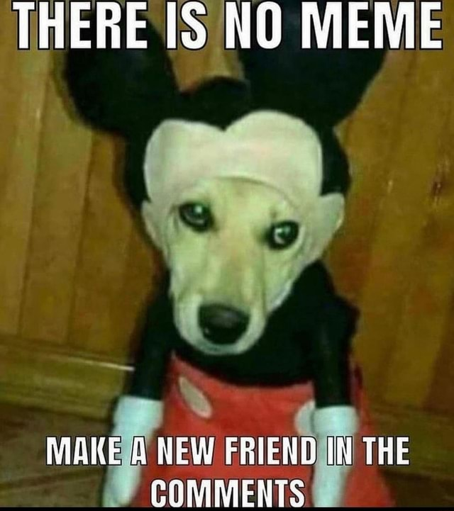 THERE NO MEME NEW COMMENTS THE