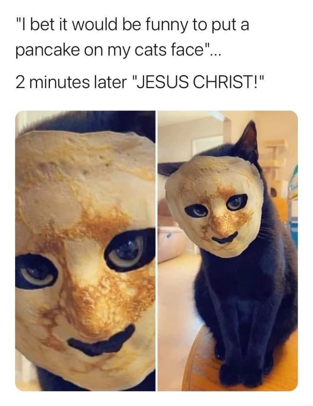 I bet it would be funny to put a pancake on my cats face 2 minutes later JESUS CHRIST meme