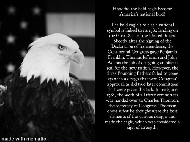 How did the bald eagle become America's national bird The bald eagle's role as a national symbol is linked to its 1782 landing on the Great Seal of the United States. Shortly after the signing of the Declaration of Independence, the Continental Congress gave Benjamin Franklin, Thomas Jefferson and John Adams the job of designing an official seal for the new nation. However, the three Founding Fathers failed to come up with a design that won Congress approval, as did two later committees that were given the task. In mid June 1782, the work of all three committees was handed over to Charles Thomson, the secretary of Congress. Thomson chose what he thought were the best elements of the various designs and made the eagle, which was considered a sign of strength memes
