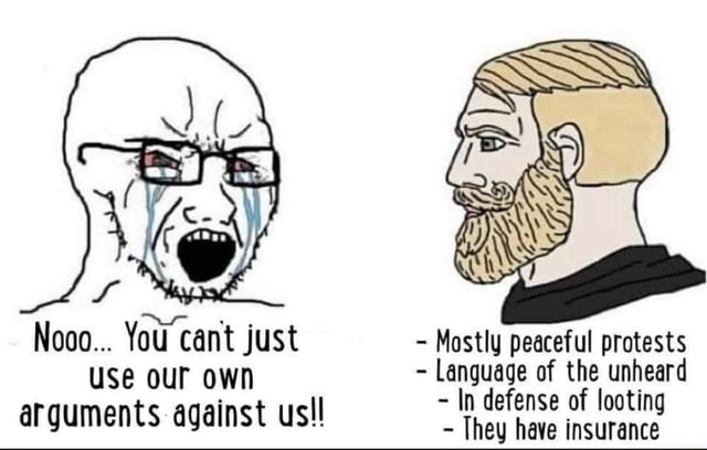 Nooo You cant just Mostly peaceful protests use our own Language of the unheard In defense of looting arguments against usll They have defense insurance of memes