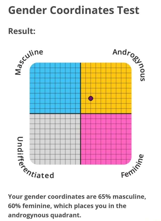 Gender Coordinates Test cc Result ne Qa tiated Your gender coordinates are 65% masculine, 60% feminine, which places you in the androgynous quadrant memes