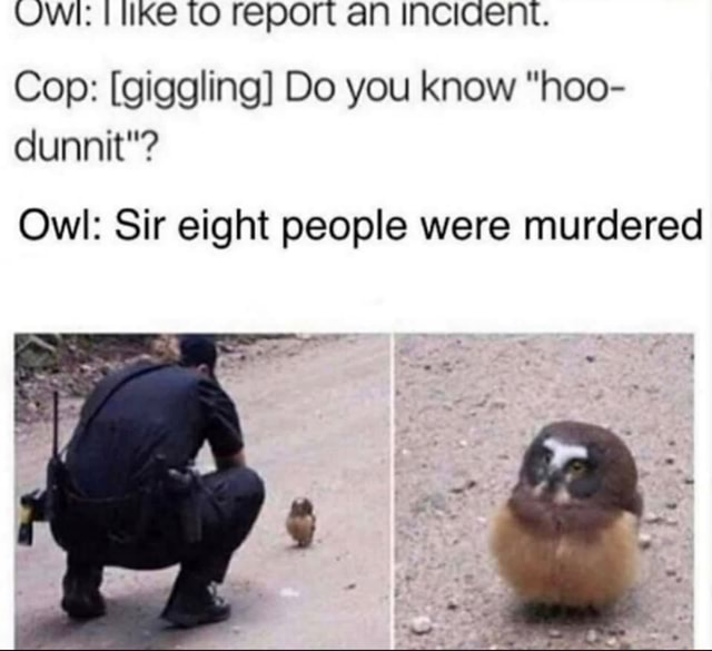 UWI tO report an InciIGent. Cop  giggling Do you know hoo dunnit  Owl Sir eight people were murdered meme