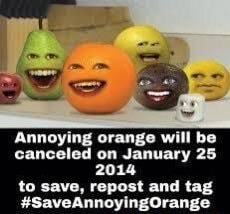 Annoying orange will be canceled on January 25 2014 to save, repost and tag memes