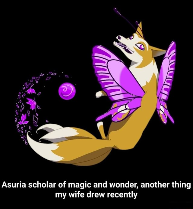 Asuria scholar of magic and wonder, another thing my wife drew recently meme