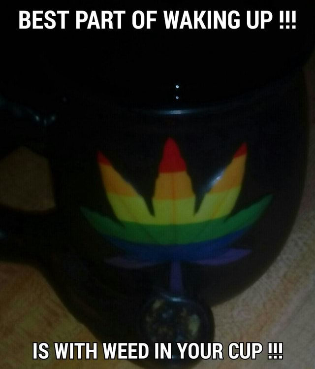 BEST PART OF WAKING UP IS WITH WEED IN YOUR CUP CUP memes