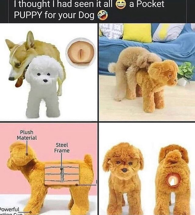 Inougnt I nad seen it all and a Pocket PUPPY for your Dog Plush Material memes