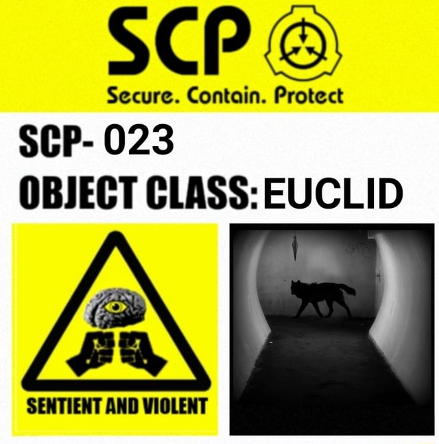 Secure. Contain. Protect SCP 023 OBJECT CLASS EUCLID memes