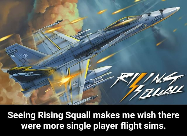 RY NE Seeing Rising Squall makes me wish there were more single player flight sims. Seeing Rising Squall makes me wish there were more single player flight sims memes