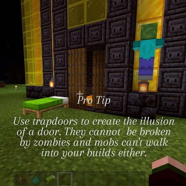 Pro Tip Use trapdoors to create the illusion ofa door. They cannot be broken by zombies and mobs cant walk into your builds either memes