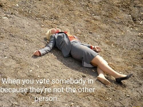 When vou vote somebody in because theyre not the other person memes