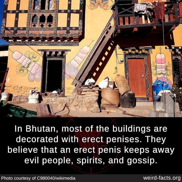 In Bhutan, most of the buildings are decorated with erect penises. They believe that an erect penis keeps away evil people, spirits, and gossip. Photo courtesy of memes