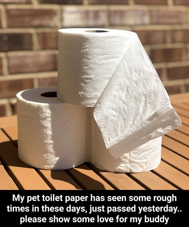 My pet toilet paper has seen some rough times in these days, just passed yesterday please show some love for my buddy  My pet toilet paper has seen some rough times in these days, just passed yesterday please show some love for my buddy memes