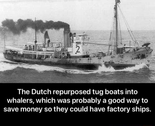 The Dutch repurposed tug boats into whalers, which was probably a good way to save money so they could have factory ships. The Dutch repurposed tug boats into whalers, which was probably a good way to save money so they could have factory ships memes