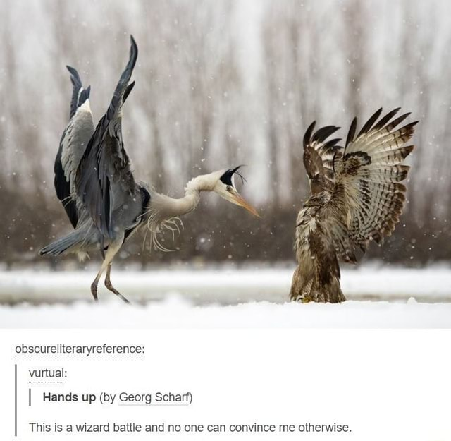 Obscureliteraryreference vurtual I Hands up by Georg Scharf This is a wizard battle and no one can convince me otherwise memes