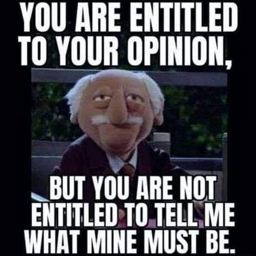 YOU ARE ENTITLED TO YOUR OPINION, BUT YOU ARE ROT ENTITLED TELL ME WHAT MINE MUST BE memes